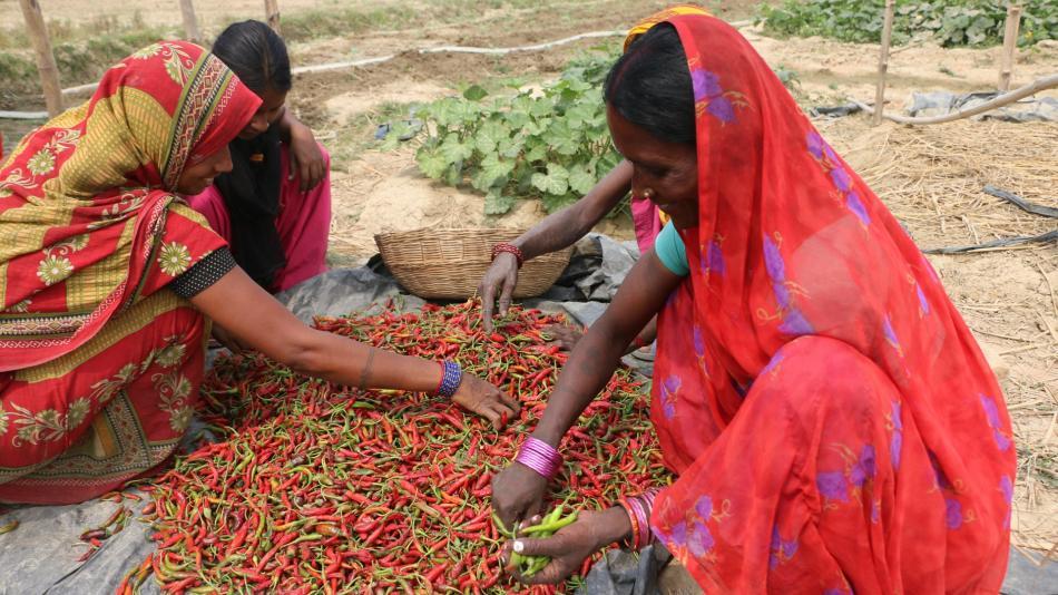 Empowering Dalit Women through Skills and Voice